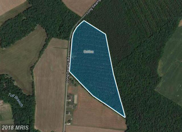 Long Swamp Road, Federalsburg, MD 21632 (MLS #CM10161891) :: RE/MAX Coast and Country