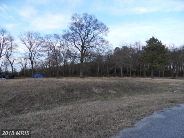 27538 Williamson Drive, Federalsburg, MD 21632 (MLS #CM10187539) :: RE/MAX Coast and Country