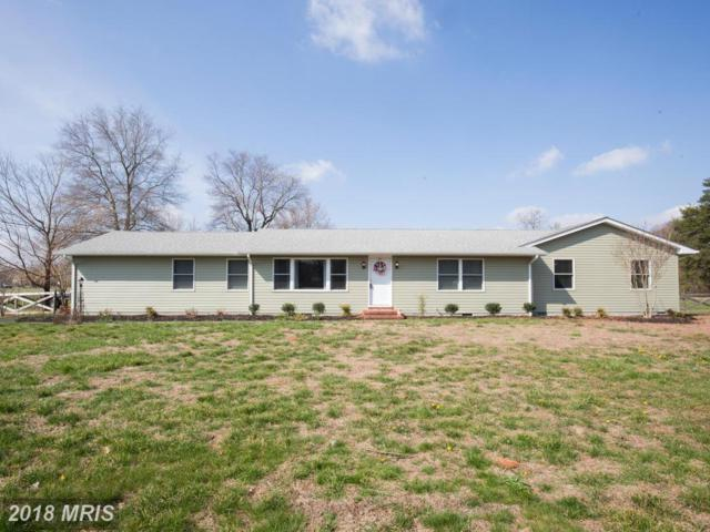 10920 Greensboro Road, Denton, MD 21629 (MLS #CM10206684) :: RE/MAX Coast and Country