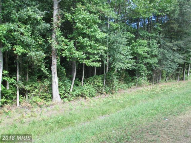 Rte 313 Road, Federalsburg, MD 21632 (#CM10274584) :: RE/MAX Coast and Country