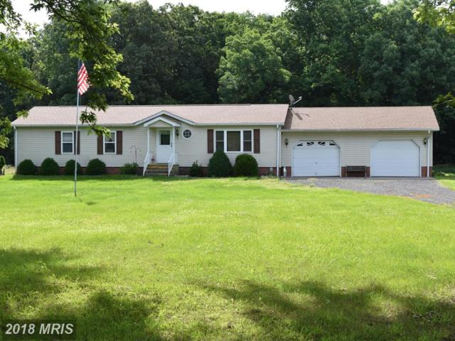 18155 Templeville Road, Marydel, MD 21649 (#CM10274823) :: The Gus Anthony Team