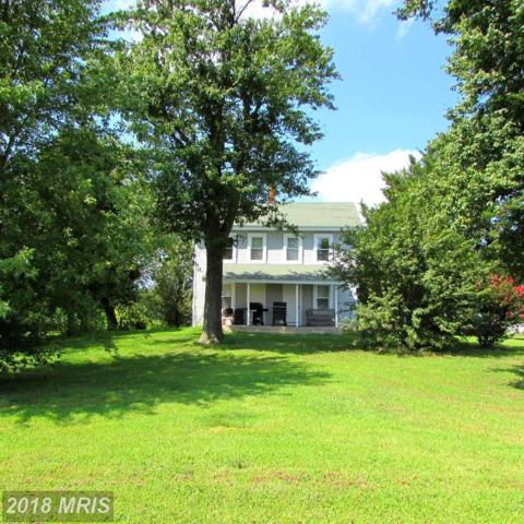 23844 Willow Pond Road, Denton, MD 21629 (#CM10321283) :: Maryland Residential Team