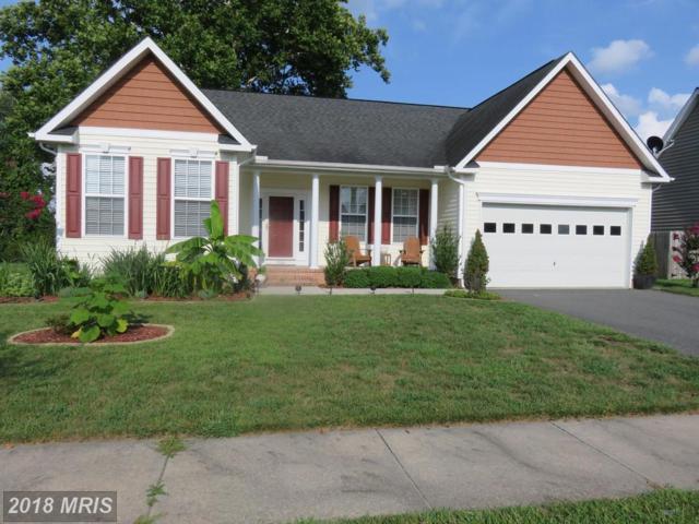 1306 Trice Meadows Circle, Denton, MD 21629 (#CM10321810) :: Maryland Residential Team