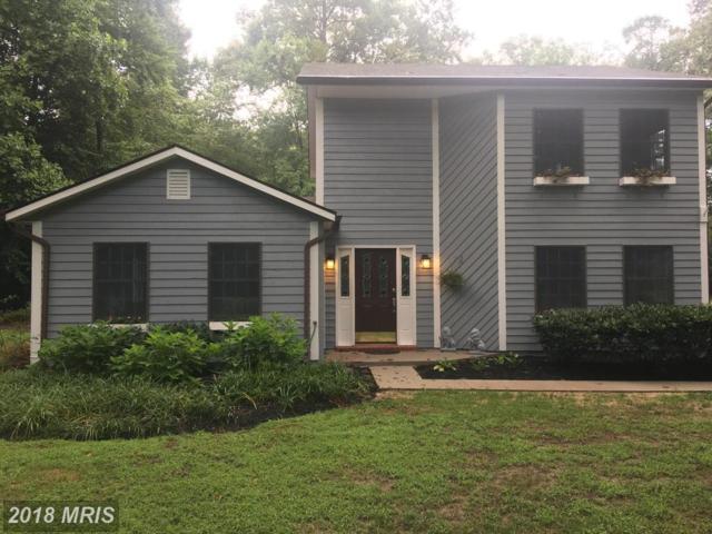 24219 Robins Creek Road, Preston, MD 21655 (#CM10325072) :: Maryland Residential Team