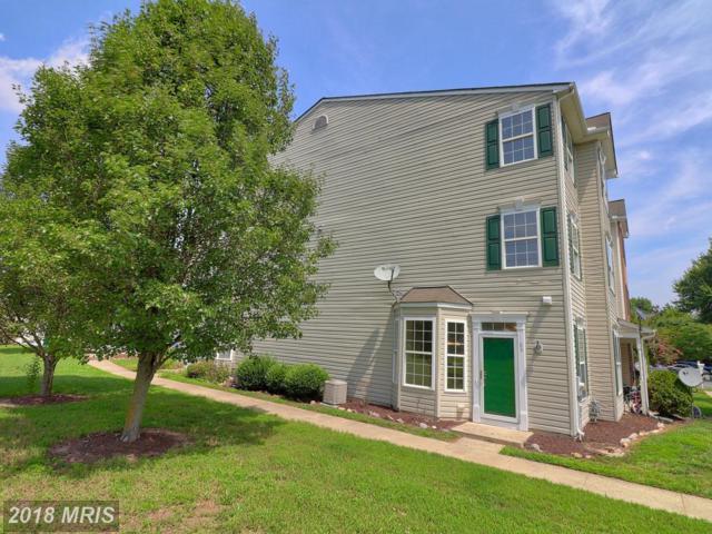 1105 Blue Heron Drive, Denton, MD 21629 (#CM10325423) :: Maryland Residential Team