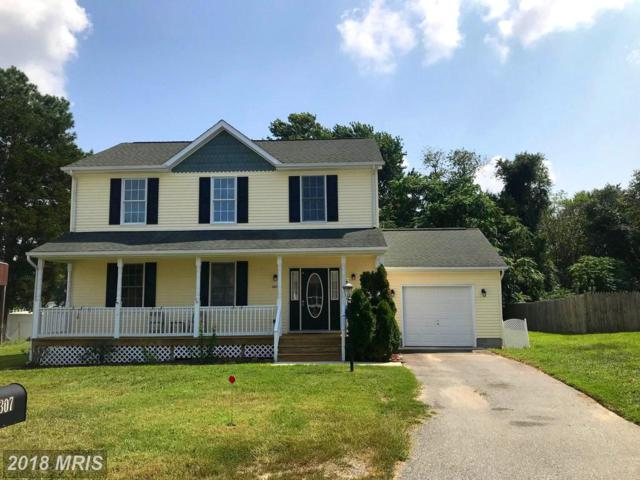 307 Mallard Drive, Greensboro, MD 21639 (#CM10332979) :: Labrador Real Estate Team