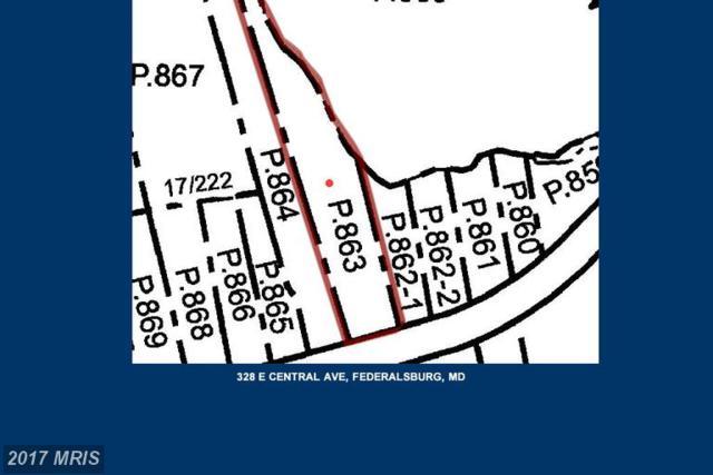 328 Central Avenue E, Federalsburg, MD 21632 (#CM9909249) :: LoCoMusings