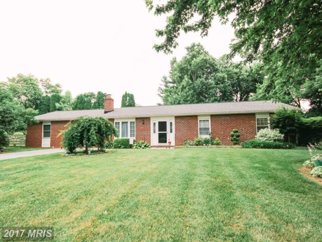 2115 Sterling Court, Hampstead, MD 21074 (#CR10003542) :: LoCoMusings