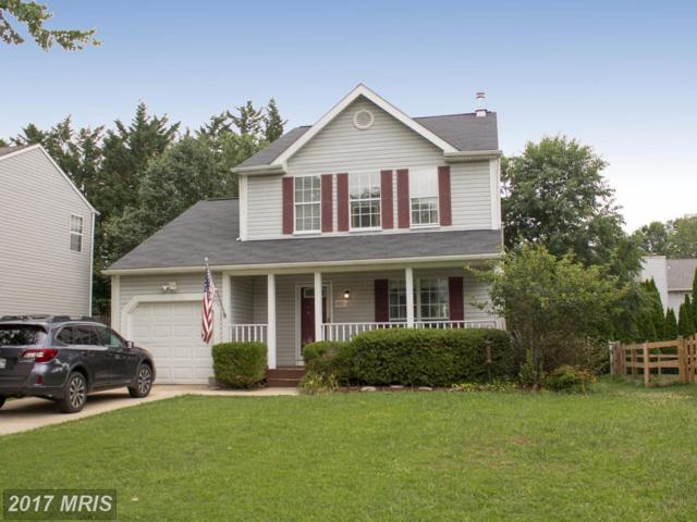 6257 Pinyon Pine Court, Sykesville, MD 21784 (#CR10015395) :: Pearson Smith Realty