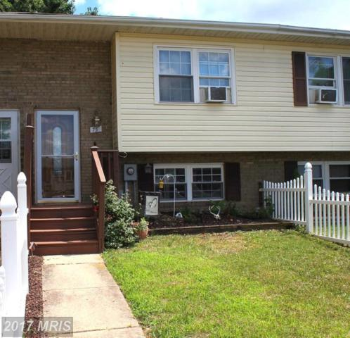 75 Carnival Drive, Taneytown, MD 21787 (#CR10018347) :: Pearson Smith Realty