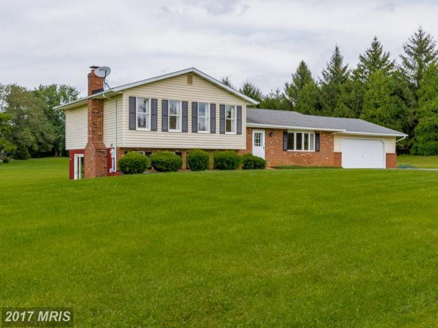 1880 Lakeland Drive, Finksburg, MD 21048 (#CR10027513) :: LoCoMusings