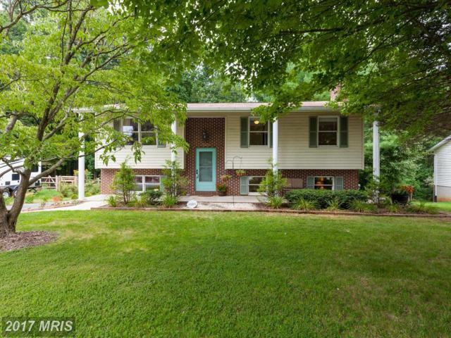 7272 Pommel Drive, Sykesville, MD 21784 (#CR10031347) :: Pearson Smith Realty