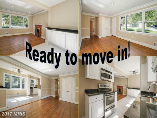 6509 Sunset Drive, Sykesville, MD 21784 (#CR10031863) :: Charis Realty Group