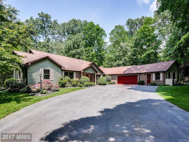 6492 Ken Mar Drive, Sykesville, MD 21784 (#CR10031882) :: Charis Realty Group