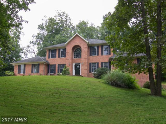 3373 Lawndale Road, Reisterstown, MD 21136 (#CR10033680) :: Pearson Smith Realty