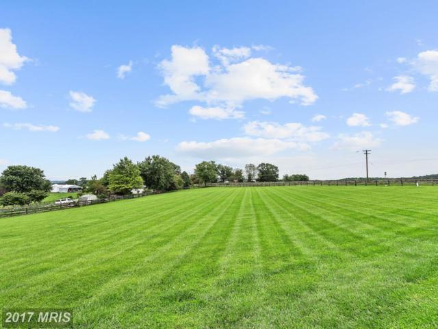 0 Oak Tree Road, Westminster, MD 21157 (#CR10034222) :: Pearson Smith Realty