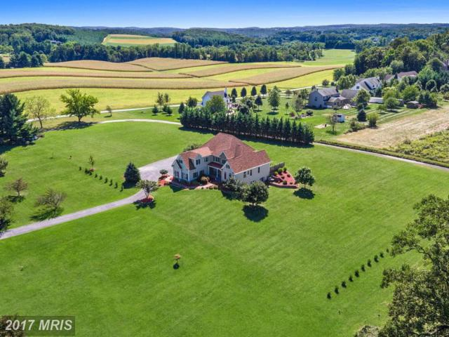 1638 Stone Chapel Road, New Windsor, MD 21776 (#CR10034749) :: Pearson Smith Realty