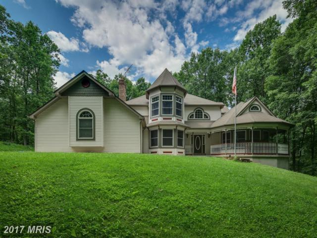 4090 Teklen Drive, Westminster, MD 21157 (#CR10037114) :: LoCoMusings