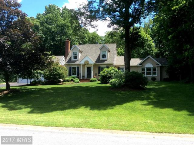 5177 Stone House Village Court, Sykesville, MD 21784 (#CR10043822) :: Pearson Smith Realty