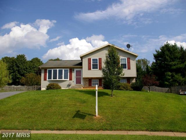 387 Mountain Laurel Court, Westminster, MD 21158 (#CR10045646) :: LoCoMusings