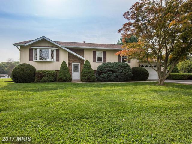 5191 Perry Road, Mount Airy, MD 21771 (#CR10051315) :: Pearson Smith Realty