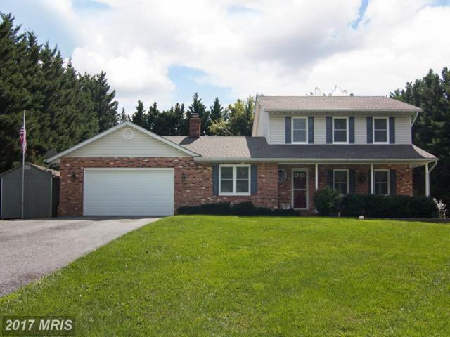1045 Collins Avenue, Sykesville, MD 21784 (#CR10057520) :: Keller Williams Pat Hiban Real Estate Group