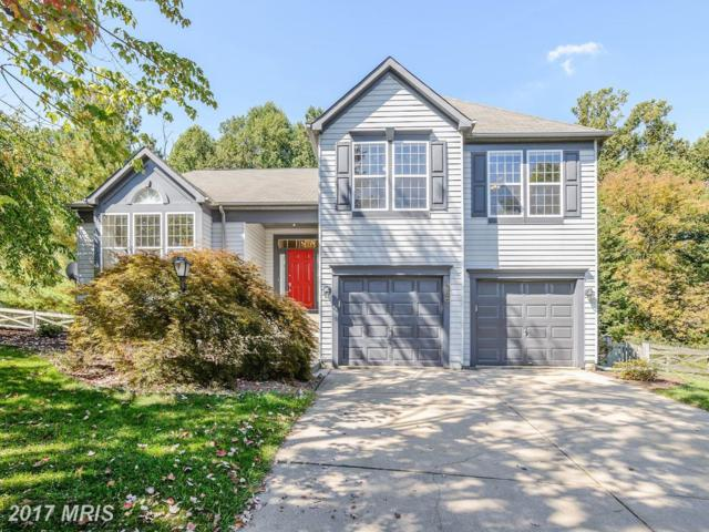 386 Winged Foot Drive, Westminster, MD 21158 (#CR10062350) :: LoCoMusings