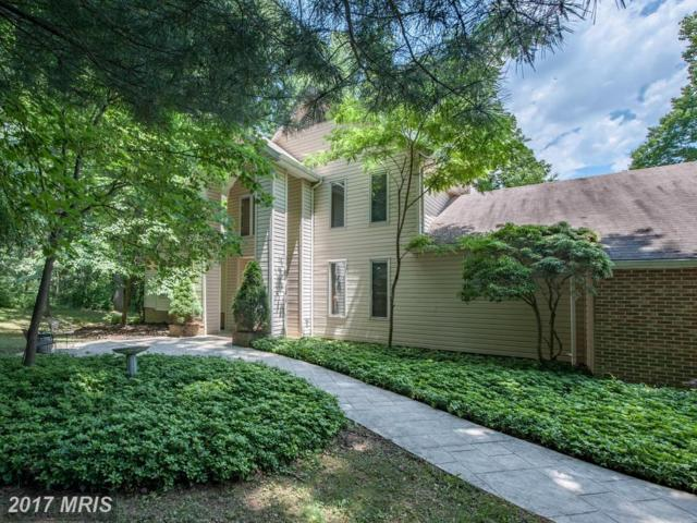 990 Wilda Drive, Westminster, MD 21157 (#CR10062668) :: Wilson Realty Group