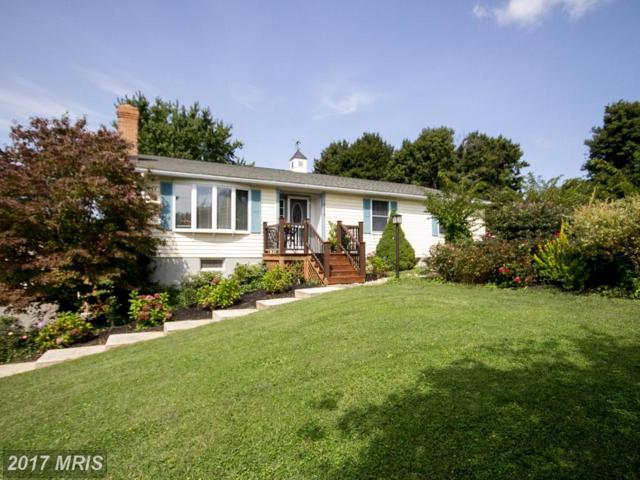 2816 Bird View Road, Westminster, MD 21157 (#CR10064540) :: The Maryland Group of Long & Foster