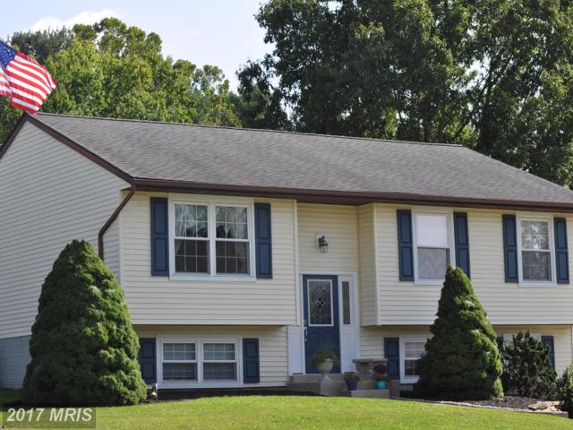 219 Stacy Lee Drive, Westminster, MD 21158 (#CR10066703) :: LoCoMusings