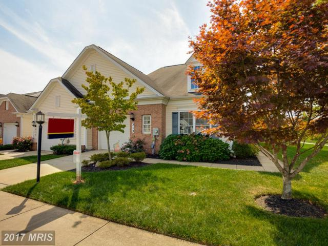 313 Butterfly Drive #88, Taneytown, MD 21787 (#CR10069256) :: LoCoMusings