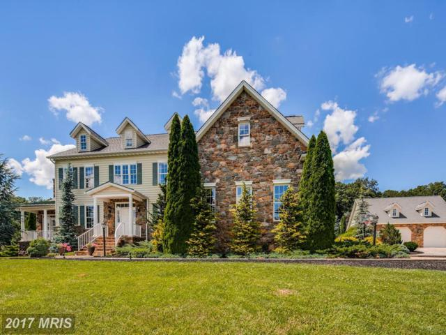 4902 Wentz Road, Manchester, MD 21102 (#CR10069493) :: LoCoMusings
