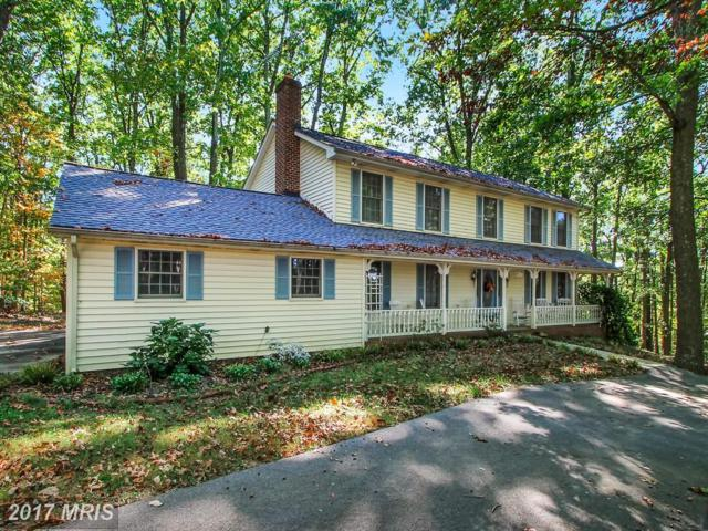 457 Blizzard Lane, Westminster, MD 21157 (#CR10071356) :: Pearson Smith Realty