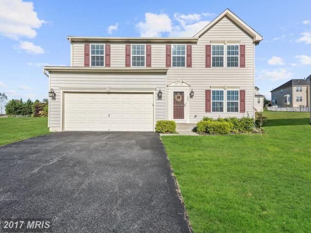 193 Wyndtryst Drive, Westminster, MD 21158 (#CR10074327) :: Pearson Smith Realty
