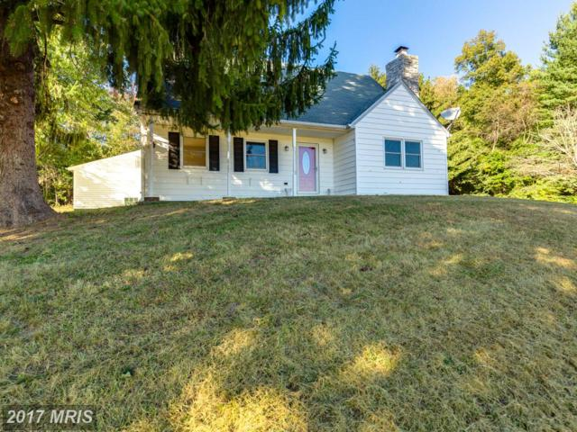 3645 Old Hanover Road, Westminster, MD 21158 (#CR10074797) :: LoCoMusings
