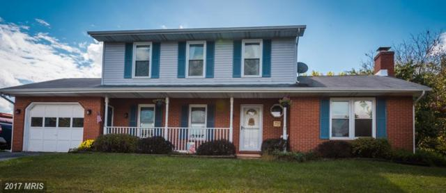 2031 Red River Road, Sykesville, MD 21784 (#CR10077037) :: LoCoMusings