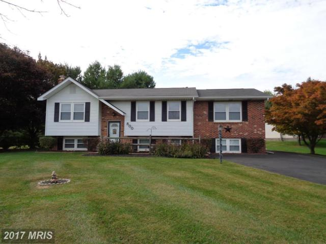 800 Velvet Run Drive, Westminster, MD 21157 (#CR10106595) :: ExecuHome Realty
