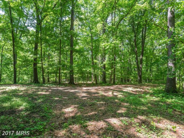 Blue Heron Drive, Westminster, MD 21157 (#CR10109464) :: The Maryland Group of Long & Foster