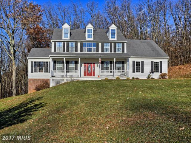 1670 Tulls Overlook Drive, Westminster, MD 21157 (#CR10115997) :: Pearson Smith Realty