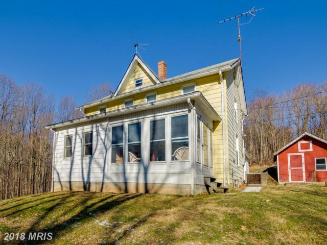 7424 Watersville Road, Mount Airy, MD 21771 (#CR10128167) :: Pearson Smith Realty