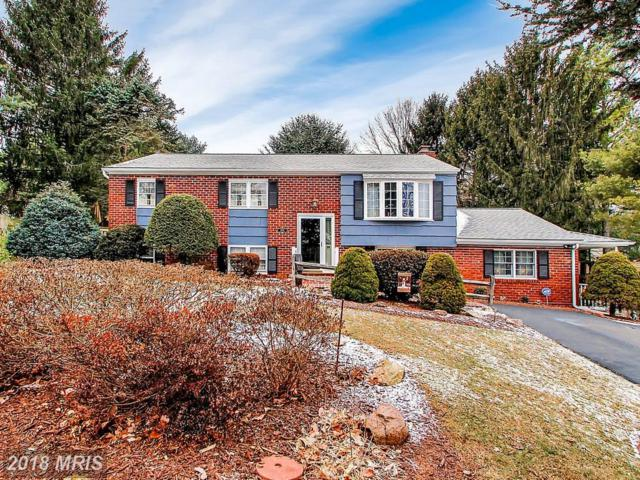 2802 Willow View Court, Hampstead, MD 21074 (#CR10135824) :: CORE Maryland LLC