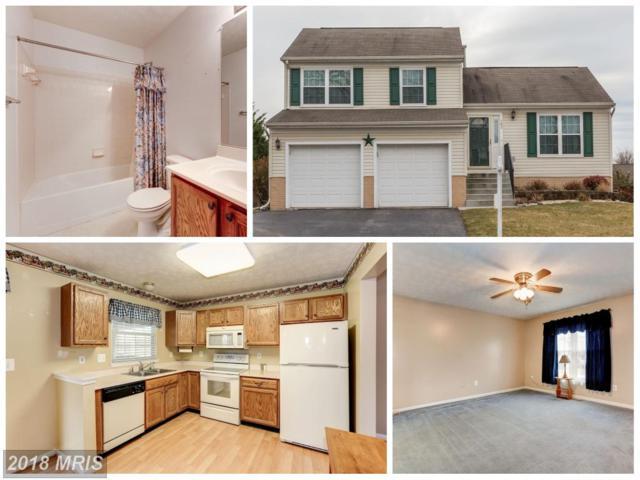 163 Bentley Street, Taneytown, MD 21787 (#CR10137381) :: Keller Williams Pat Hiban Real Estate Group