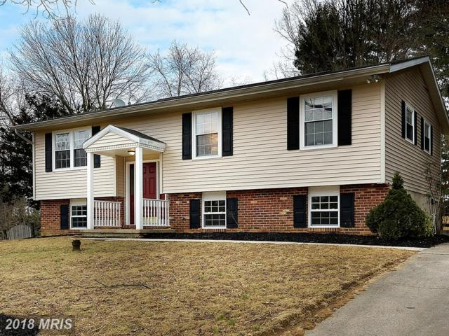 1009 Courtland Drive, Sykesville, MD 21784 (#CR10158065) :: Keller Williams Pat Hiban Real Estate Group