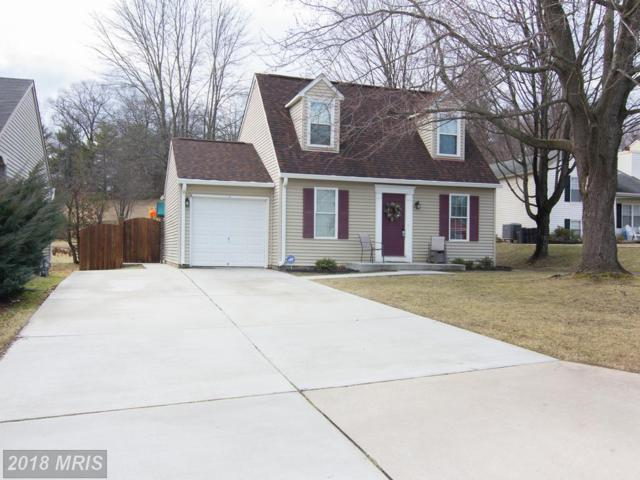 917 Slash Pine Court, Sykesville, MD 21784 (#CR10158167) :: Keller Williams Pat Hiban Real Estate Group