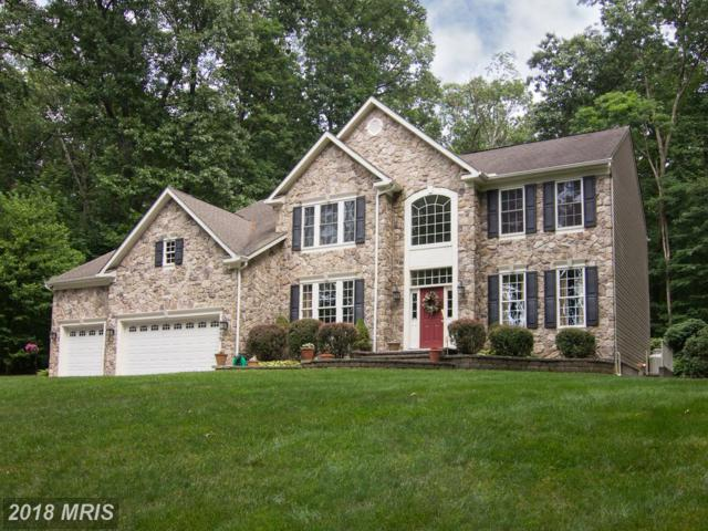5859 White Rock Road, Sykesville, MD 21784 (#CR10158361) :: Keller Williams Pat Hiban Real Estate Group