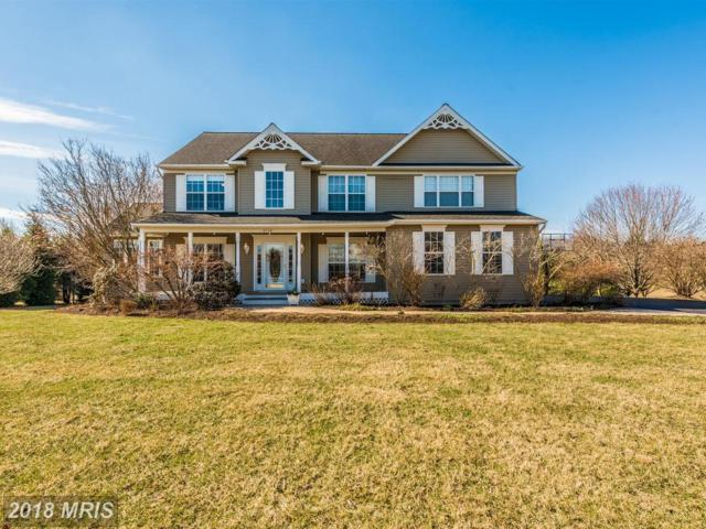 3719 Falling Green Way, Mount Airy, MD 21771 (#CR10168808) :: Ultimate Selling Team