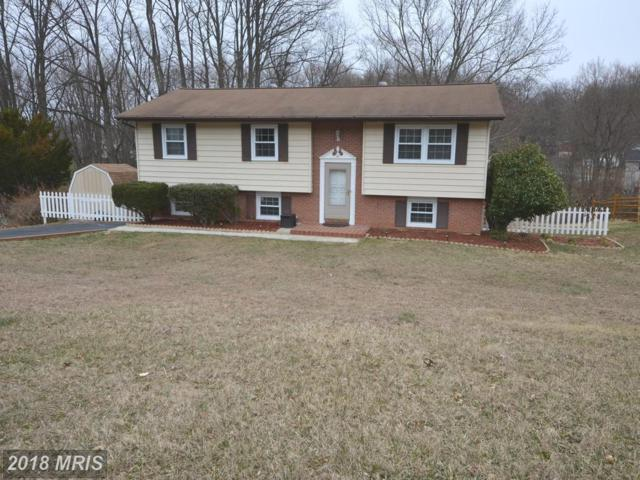 5811 Dale Drive, Sykesville, MD 21784 (#CR10189130) :: Dart Homes