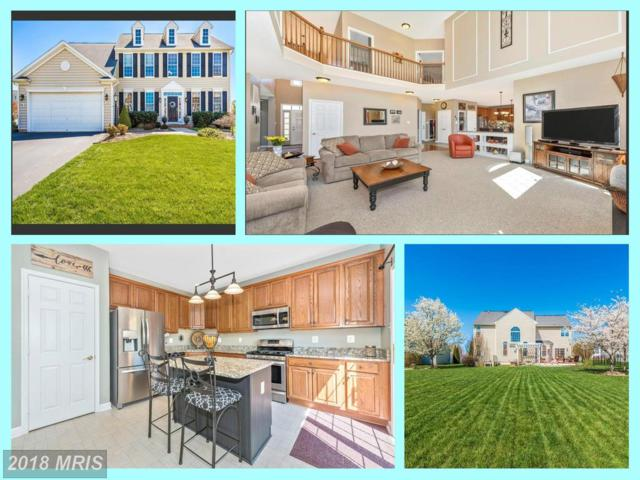 1709 Kings Forest Trail, Mount Airy, MD 21771 (#CR10214197) :: LoCoMusings