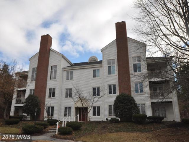 405 Pleasanton Road A24, Westminster, MD 21157 (#CR10215096) :: Wilson Realty Group