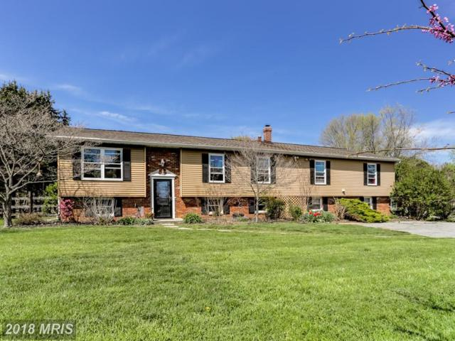 610 Fannie Dorsey Road, Sykesville, MD 21784 (#CR10224719) :: The Bob & Ronna Group